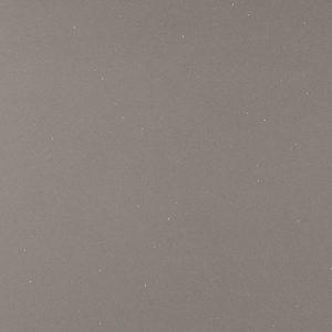 Stellar Gray Quartz Countertop